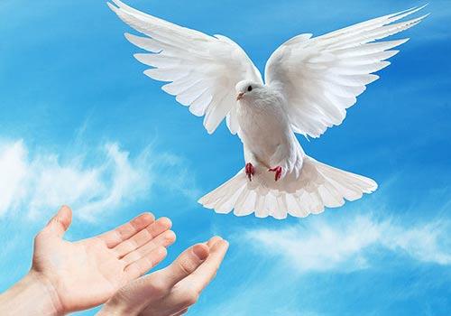 3 conceptos errados sobre el espíritu Santo