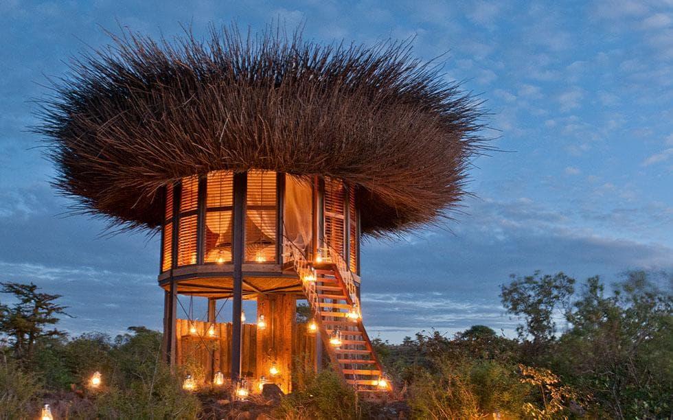 El hotel nido de Kenia, un resort 5 estrellas - Revista Toxicshock