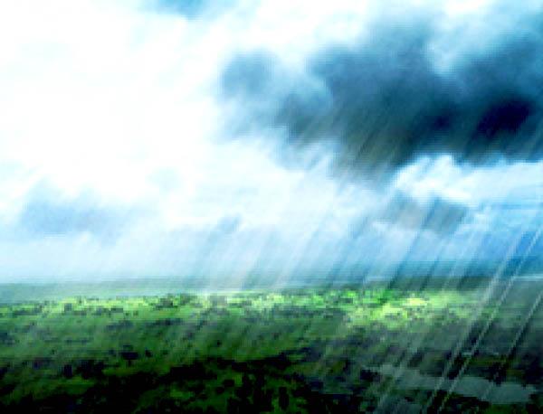 Qué conocemos sobre la lluvia ácida Revista Toxicshock