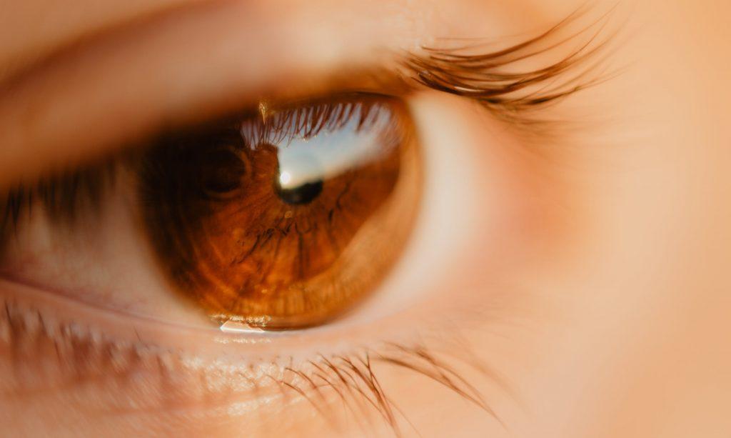 c60e972072 Un gran enemigo para los ojos, el sol es fundamental para lo que es la  vitamina D. Pero en cuanto a los ojos las cosas son diferentes y es que  puede ...